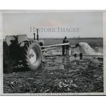 1954 Press Photo Richard Royer of Kansas, waters his drought stricken farm.