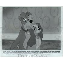 "1980 Press Photo Walt Disney's ""Lady and the Tramp"" - mja93703"