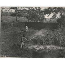 1914 Press Photo Alabama-Tennessee Coal & Iron-Man spraying field. - abnz02970