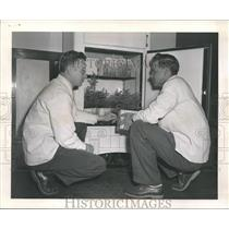 1953 Press Photo Paul Flink and Donald Prielipp, forest research lab, Michigan.