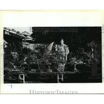 1991 Press Photo Man with Bonsai Trees