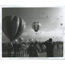 1975 Press Photo Crowds watching Hot Air Balloons of all designs - nox05639