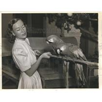 1941 Press Photo Sigrid Gurie Norwegian-American Actress displayed two Macaws