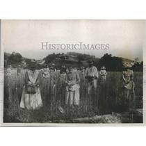 1921 Press Photo Six Thousands Locals Turn Out to Harvest Tuberose, Grasse, FR.