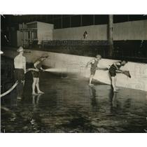 1918 Press Photo Suna Park in Cleveland, Ohio. - cvp81451
