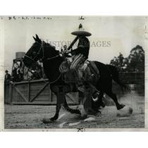 1940 Press Photo Rider Horse Steer Tailing Exhibit - RRY59123