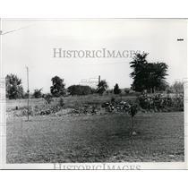 1908 Press Photo View of Looking West Toward Madison Avenue Lakewood, Ohio