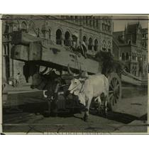 1922 Press Photo Oxcarts in the streets of Bombay, India - cvb31664