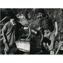1962 Press Photo Workers searching for gold near the Tasman Sea in New Zealand
