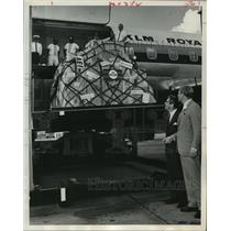 1966 Press Photo Managers & KLM Royal Dutch Airlines' Inaugural Flight Cargo.
