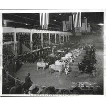 1923 Press Photo Little International Live Stock Show at University, Wisconsin.