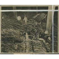1943 Press Photo Officials Investigate Plane Crash in Birmingham, Alabama