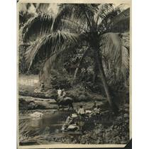 1928 Press Photo Native People of the Philippines Using Local Stream - mjb85262