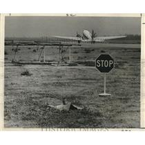 1966 Press Photo Radioactive material declared safe at New Orleans Airport