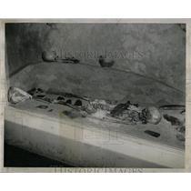 1951 Press Photo Model Indian Mound Grave - RRW64599
