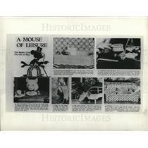 1937 Press Photo Mice - dfpd49825
