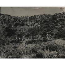 1935 Press Photo Askari Italian Troops advance on Adowa Front - nem63081