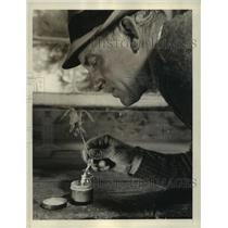 1940 Press Photo An Oak sapling being dipped into a stimulant for transplanting.