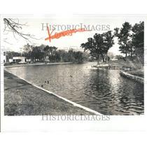 1974 Press Photo Brighton Mill Pond Ducks Swimming - RRV51687