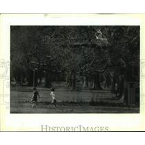 1993 Press Photo Kite Flying - nob61378