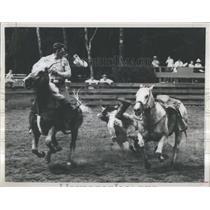 1970 Press Photo Cowboys falls during rodeo, Rainbow Sp- RSA35817