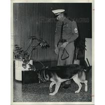 1973 Press Photo Bomb sniffing dog at work at Houston Intercontinental Airport