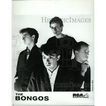 1983 Press Photo Rock Band The Bongos - RRW27261