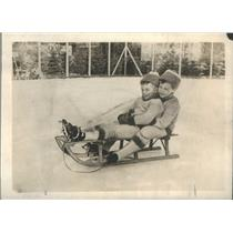 1913 Press Photo Prince Louis Fernindand And Wilhelm Of Germany Snow Sledding