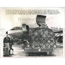 1966 Press Photo igloo Vietnam Saigon mail ready rush - RRX81969