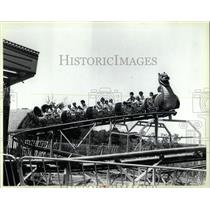 1988 Press Photo Dragon Coaster Ride Santa's Village - RRW64751