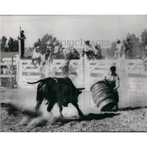 1962 Press Photo The Bull Sees Barrel: Roll out the barrel, cowboy - KSB57533