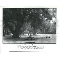 1982 Press Photo Wayne County Michigan Huies Park - RRV71199
