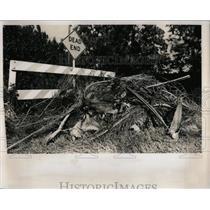1978 Press Photo Pinellas Park - RRY72221