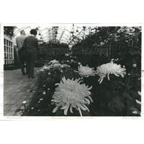 1977 Press Photo Garfield Park Conservatory - RSH66553
