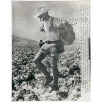1966 Press Photo Jean Pierre Marquant, Death Valley Walk - RSL57499