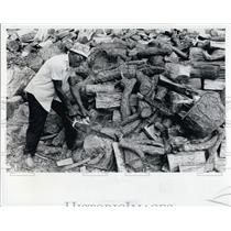 1977 Press Photo Firewood - RSL68873