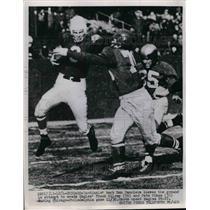 1952 Press Photo Cardinals Don Panicera vs Eagles Frank Kilroy, Pete Pihos