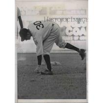 1939 Press Photo Bucky Harris, Manager of the Washington Nationals Picking Grass