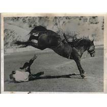 1935 Press Photo George Swartout Thrown at Ellensburg Rodeo in Washington