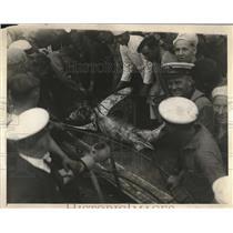 1925 Press Photo USS Camden crew & shark they caught - nea78624