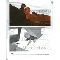 1990 Press Photo THE RESCUERS DOWN UNDER PLAYS - RRT77435