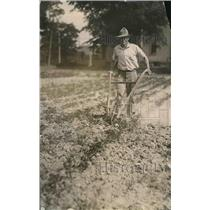 1918 Press Photo Gardening