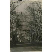 1918 Press Photo United State Capitol Building in Washington DC Through Trees