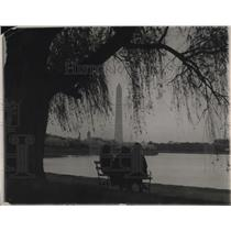 1921 Press Photo A Japenese Cherry Tree in front of the Washington Memorial.