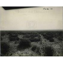 1922 Press Photo A mesquite desert area ready for an irrigation project