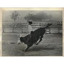 1935 Press Photo Bull riding exhibit at La, Calif. stadium