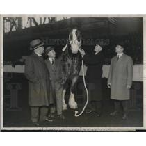 1927 Press Photo Secretary Of Agriculture Jardine With Horse At Livestock Expo