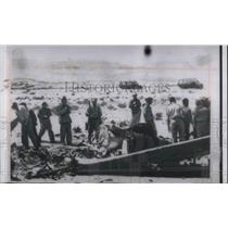 1956 Press Photo UN inspectors of shot down Isreali plane by Egyptian planes