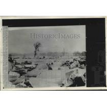 1900 Press Photo