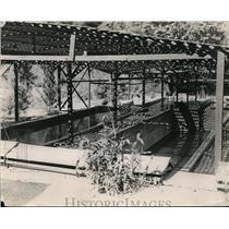 1923 Press Photo Nursery ponds at a fish hatchery